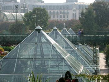Garden of the future!